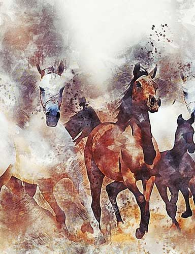 Horse riding painting