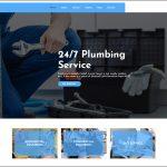 Plumbing………………………$50